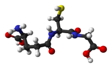 Glutathion antioxydant détoxifiant