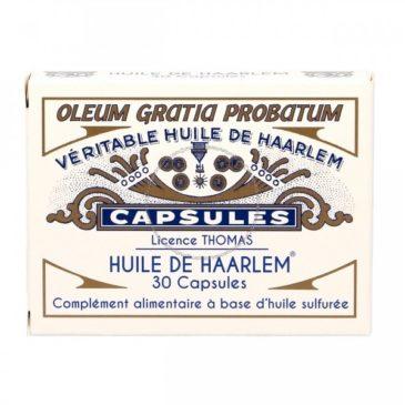 L'huile de Harleem